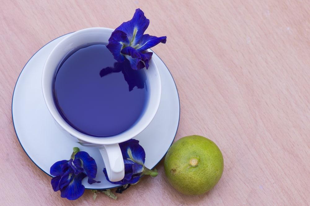 palo azul tea